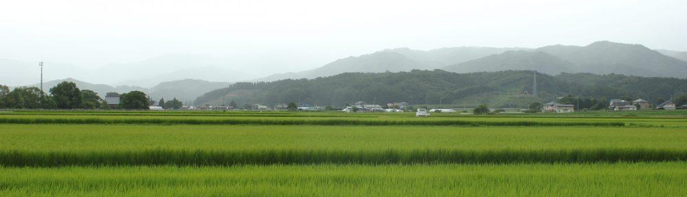 Urban-rural migration and rural revitalization in Japan